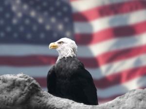US Citizenship and Naturalization